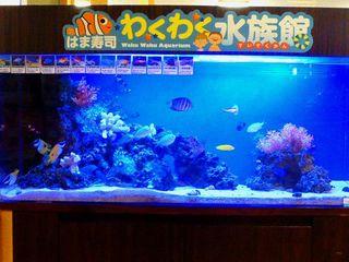 お寿司屋さんに水族館_640.jpg
