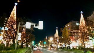 クリスマスツリー7:国立市_640.jpg