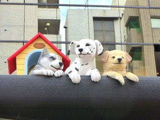 立体看板8:日本動物専門学校_640杉並区.jpg