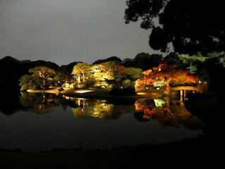 六義園夜景_640.jpg