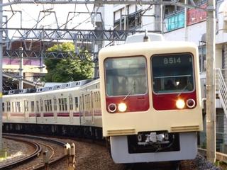 新京成8000形タヌキ?_640.jpg