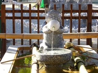 荻窪白山神社の猫の水道?_640.jpg