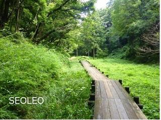 小山田緑地公園2_640.jpg