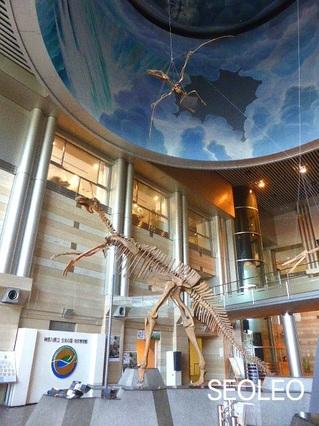 チンタオサウルス2_640.jpg