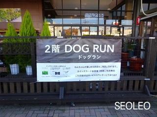 ドッグラン・町田市_640.jpg
