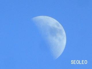 昼の月_640.jpg