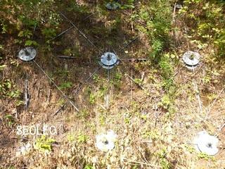 クモの巣ネット工法_640.jpg