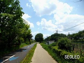 狭山・境緑道_640.jpg